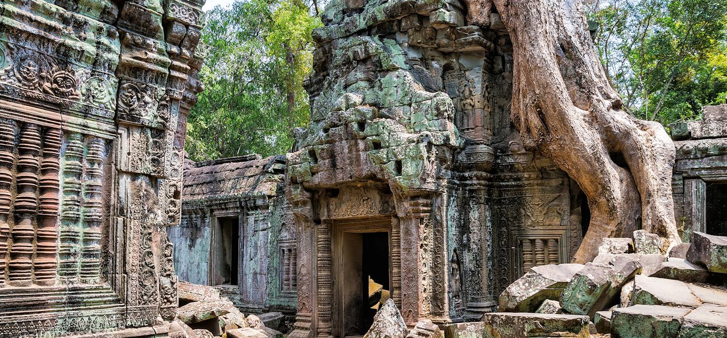 Ta Prohm - Siem Reap - Cambodge