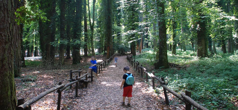 Réserve naturelle de Foresta umbra - Vieste - Les Pouilles - Italie