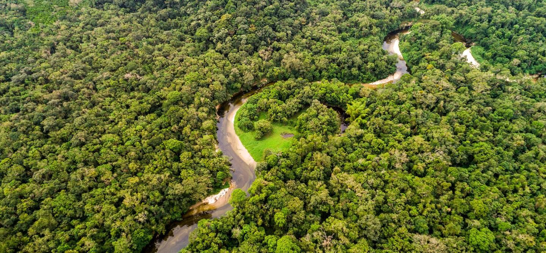 Vue aérienne sur la forêt tropicale - Amazonie - Pérou