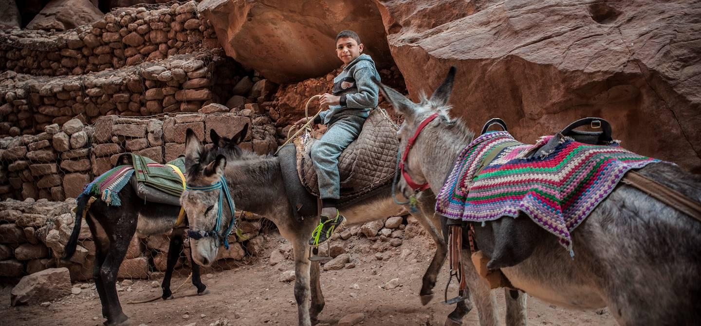 Rencontre avec des bédouins sur la route de Petra - Petra - Jordanie