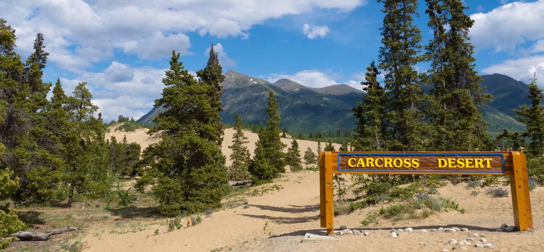 Carcross desert - Yukon - Canada