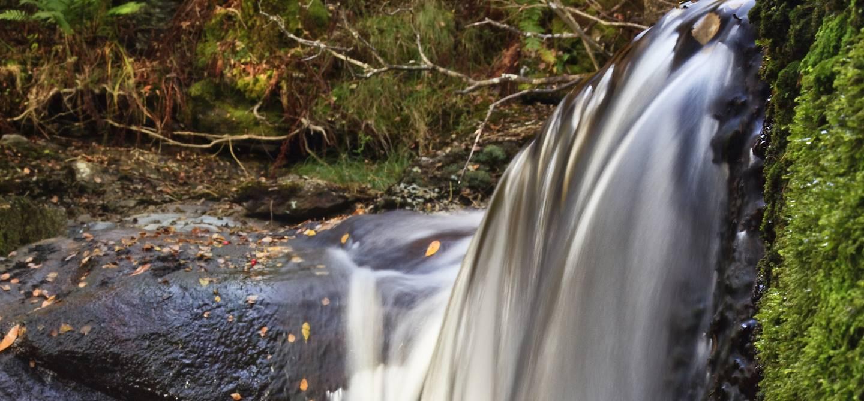 Chutes d'Inversnaid - Loch Lomond - Ecosse