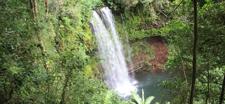 Parc national de la Montagne d'Ambre - Madagascar