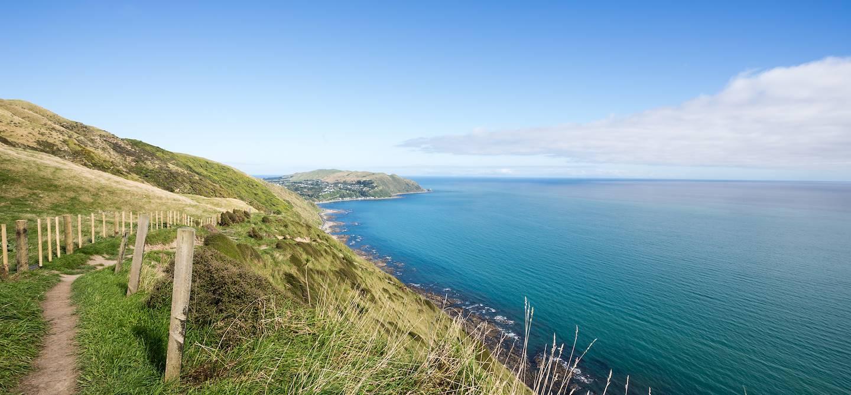 Sentier sur Kapiti Island - Paraparaumu - Nouvelle Zélande