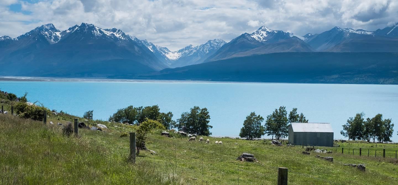 Lac Pukaki - Mount Cook - Île du Sud - Nouvelle Zélande