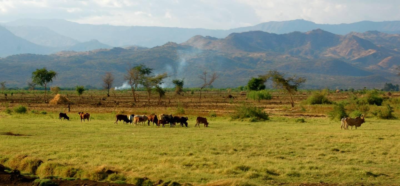 Hauts Plateaux - Pays Konso - Ethiopie