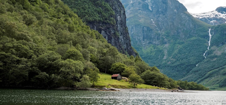 Observation de la faune et de la flore sur le Nærøyfjord, en bateau - Norvège