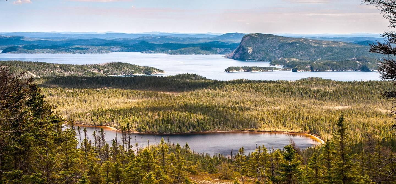 Parc national Terra-Nova - Province de Terre-Neuve-et-Labrador - Canada