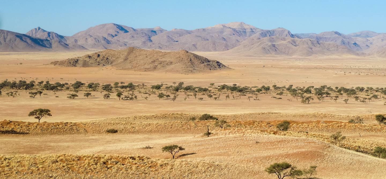 Désert de Kalahari - Kalahari - Namibie