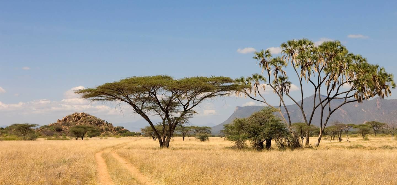 Réserve de Shaba - Kenya