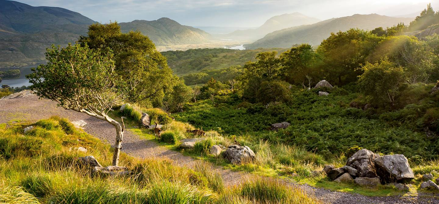 Parc national de Killarney - Comté de Kerry - Irlande