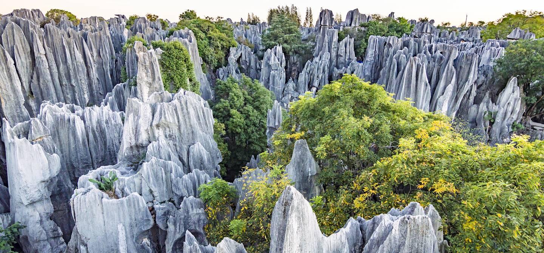 Forêts de pierre de Shilin - Kunming - Yunnan - Chine