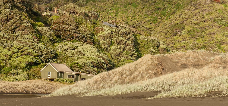 Waitakere Ranges - Auckland - Nouvelle-Zélande
