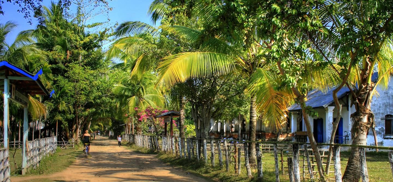 L'Île de Khone à vélo - Île de Khone - Laos