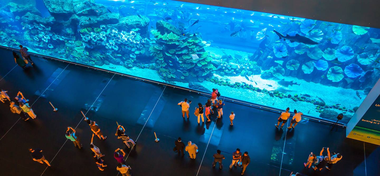 Le Dubai Mall - Emirats Arabes Unis