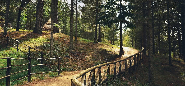 Parc national de Sila - Calabre - Italie