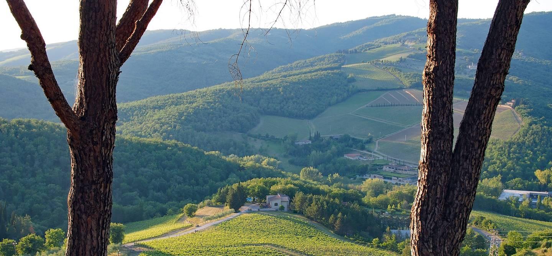 Radda in Chianti - Toscane - Italie