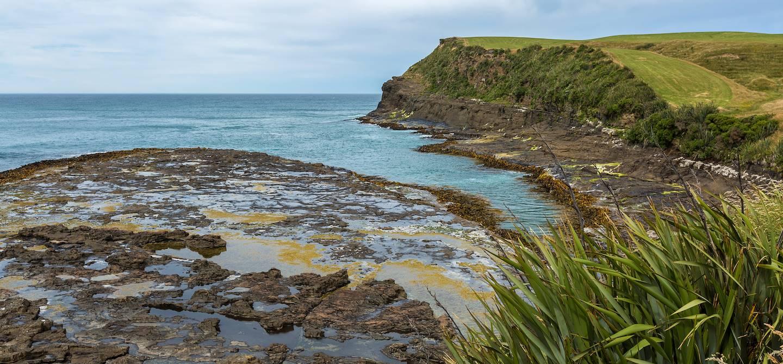 Curio Bay - Catlins - Nouvelle Zélande