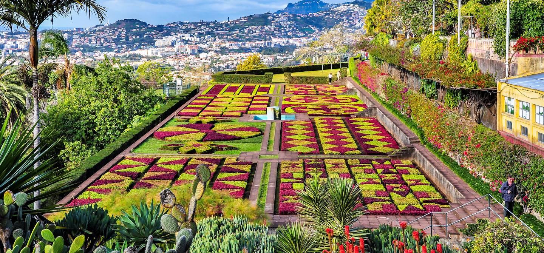 Jardin botanique - Funchal - Madère - Portugal