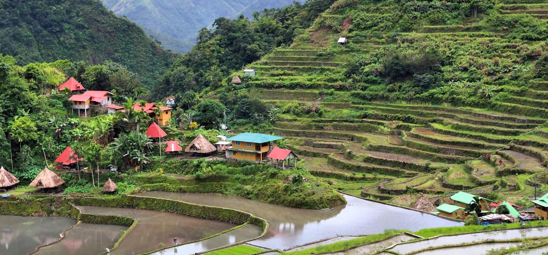 Batad - Rizières d'Ifugao - Banaue - Philippines