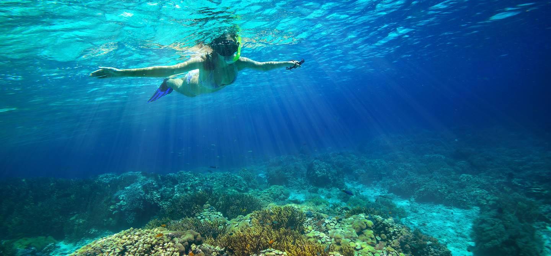 Plongée libre aux Philippines