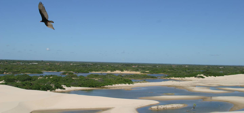 Nordeste - Brésil