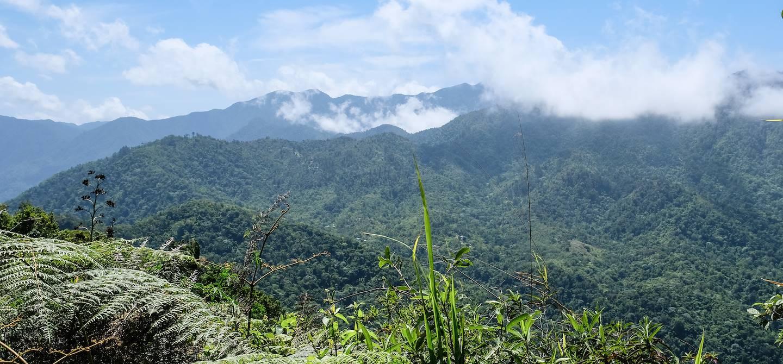 Sierra Maestra - Province de Granma - Cuba