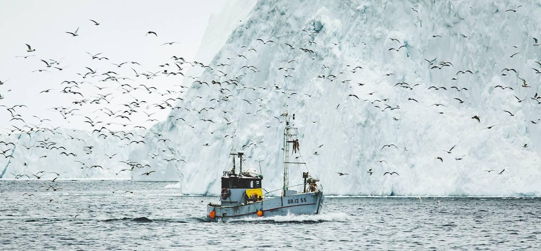 Baie de Disko - Groenland