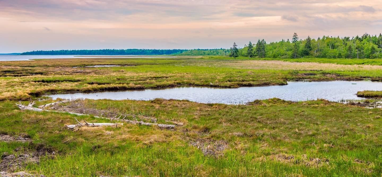 Parc national Kouchibouguac - Québec - Canada