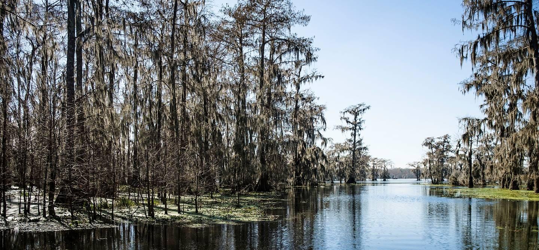 Tour du lac Martin - Louisiane - Etats Unis