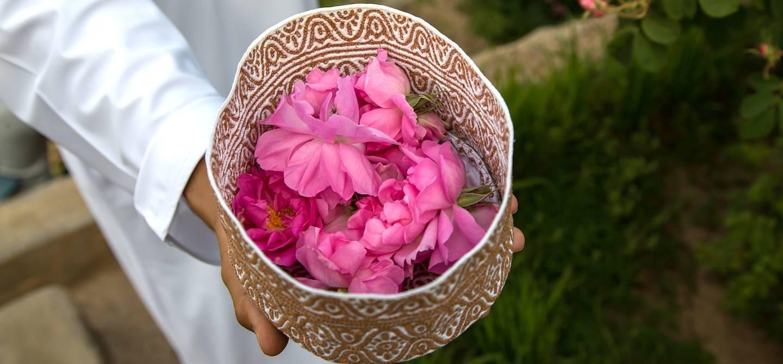Pétales de roses de Jabal Al Akhdar - Oman