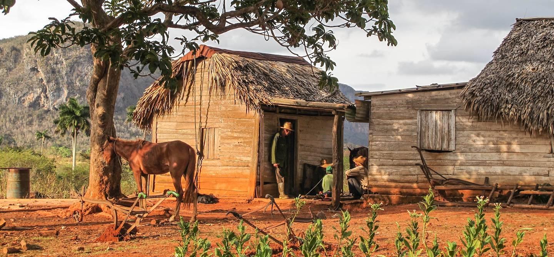 Vinales - Province de Pinar del Rio - Cuba