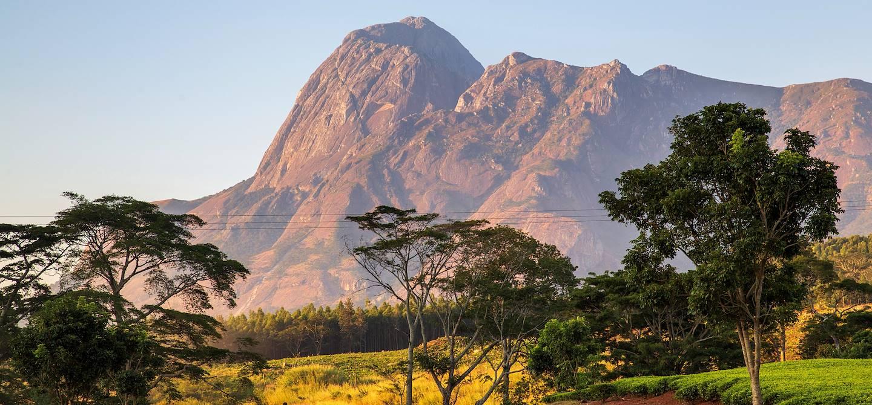 Massif de Mulanje - Malawi