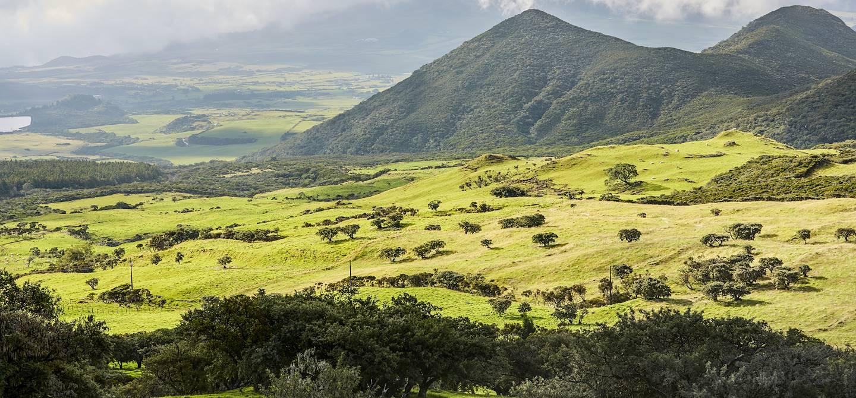 Plaine des cafres - La Réunion