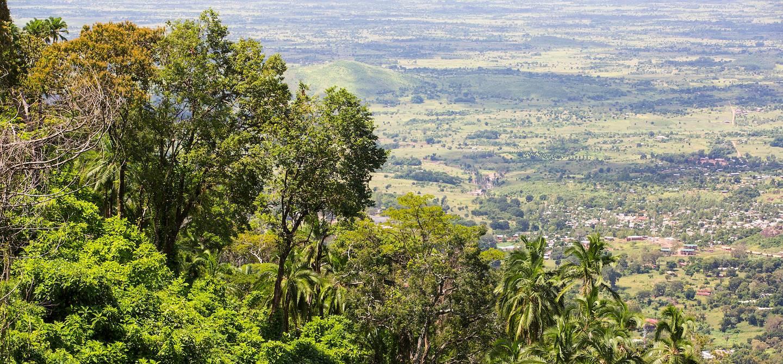 Randonnée à travers la forêt de Zomba - Malawi