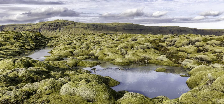 Désert d'Eldhraun - Kirkjubaejarklaustur - Islande