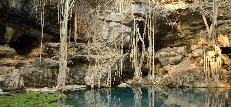 Découverte des cenotes X-Batun - Mexique