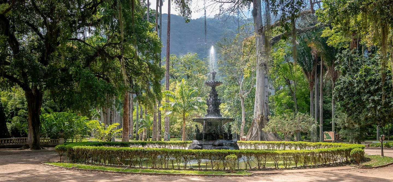 Jardin botanique de Rio de Janeiro - Brésil