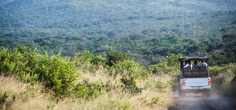 Safari en 4x4 dans la réserve de Hluhluwe-Umfolozi - Hluhluwe - KwaZulu-Natal - Afrique du Sud