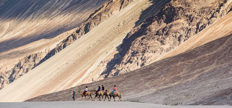 Vallée de la Nubra - Jammu et Cachemire - Inde