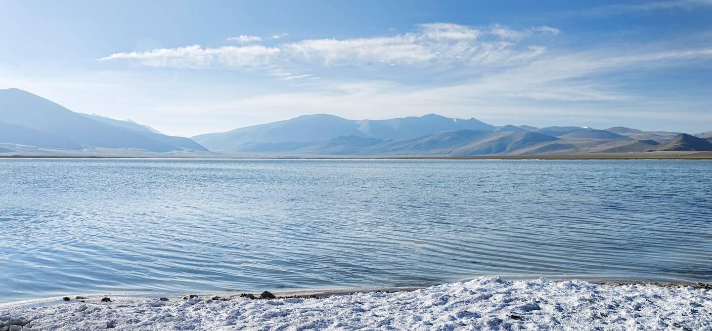 Lac Tsokar - Jammu et Cachemire - Inde