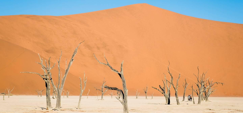 Désert de Sossusvlei - Désert du Namib - Namib Naukluft - Namibie
