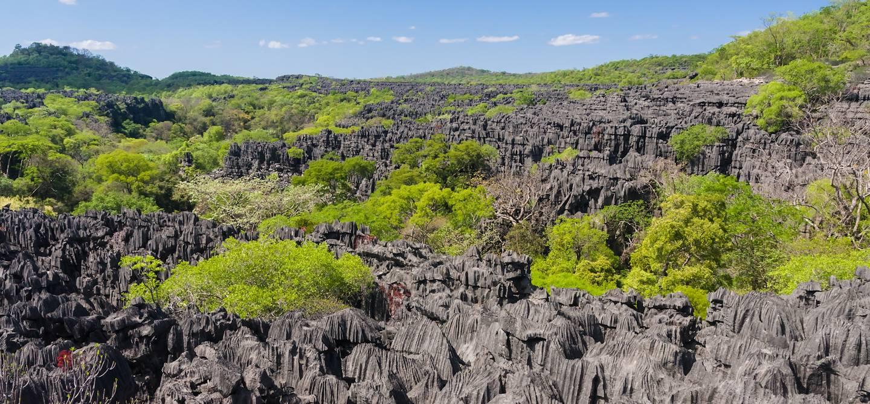 Les Tsingy de l'Ankarana Est - Massif de l'Ankarana - Madagascar