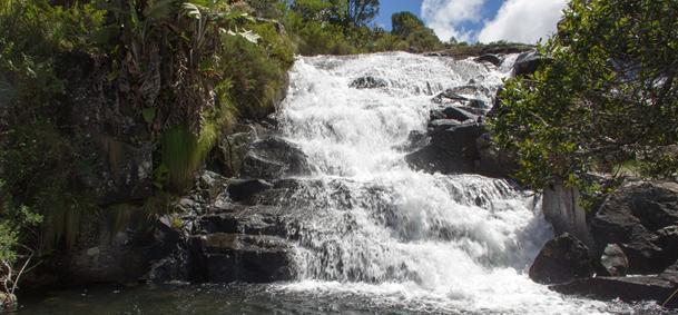 Parc national de Nyanga