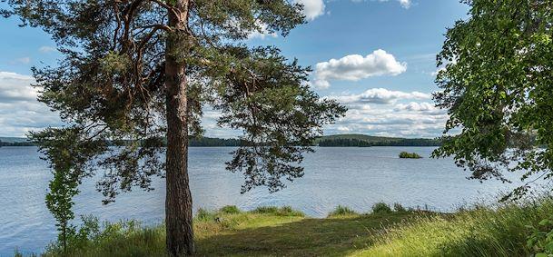 Lac Runn