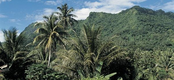 Mont Temehani - Raiatea