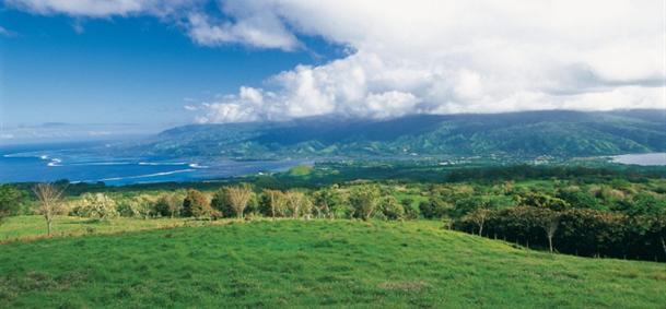 Plateau de Taravao- Tahiti