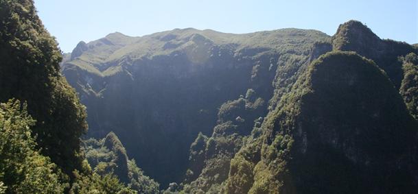 Parc forestier de Queimadas - Madère