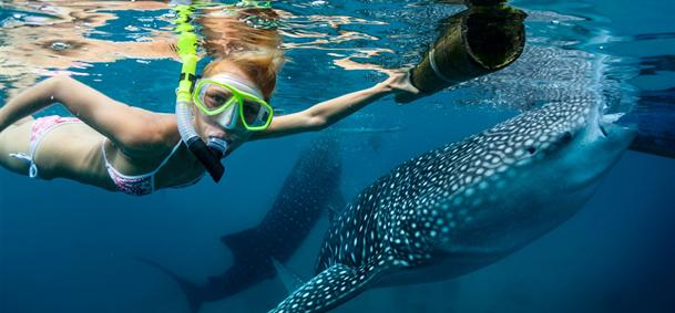 Snorkeling aux Philippines