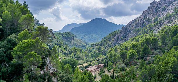 Reserve Puig De Galatzo - Majorque